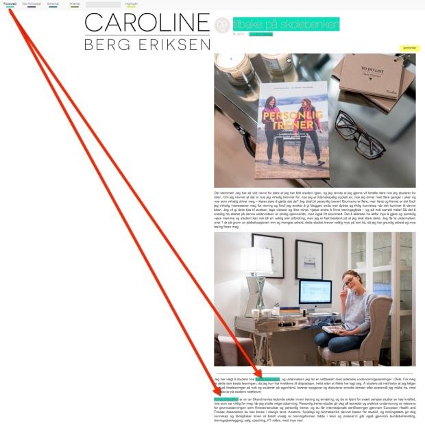 Caroline Berg Eriksen risikerer starff fra Google